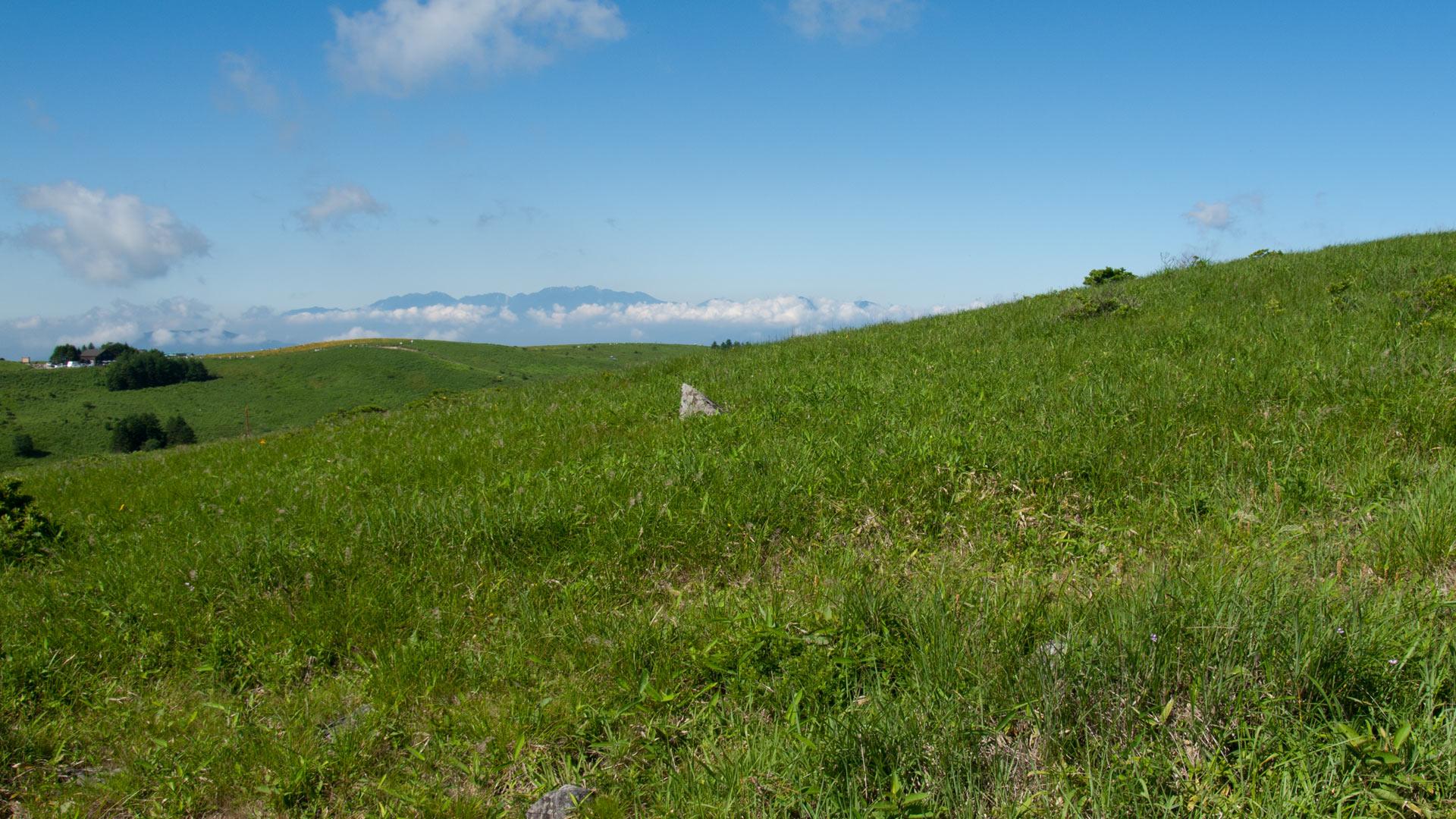 ワイド画面 1920 1080 のデスクトップ壁紙 長野県 霧ヶ峰高原 緑の草原